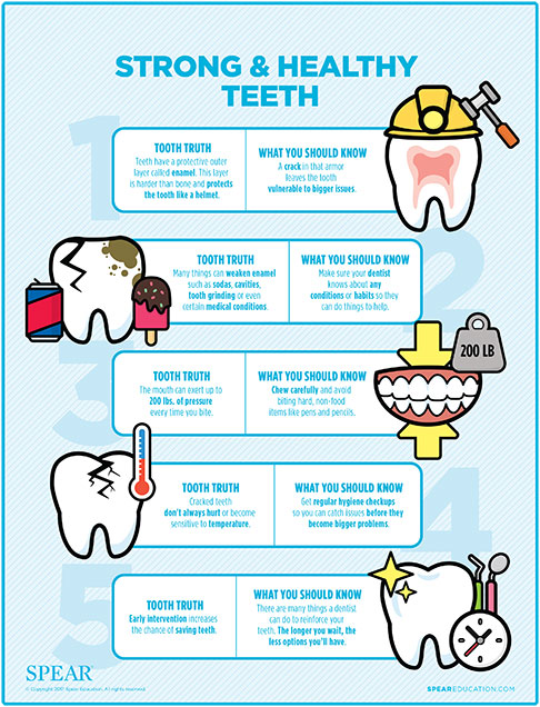 Cracked tooth infographic